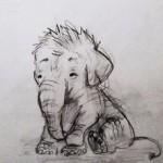 elephant dessin